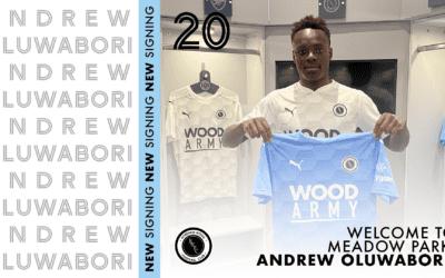 OLUWABORI LOAN BOLSTERS WOOD'S ATTACKING OPTIONS